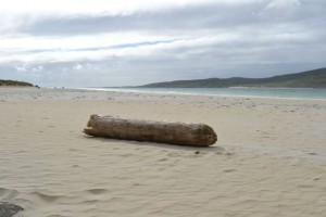 Luskentyre Beach Isle of Harris Outer Hebrides